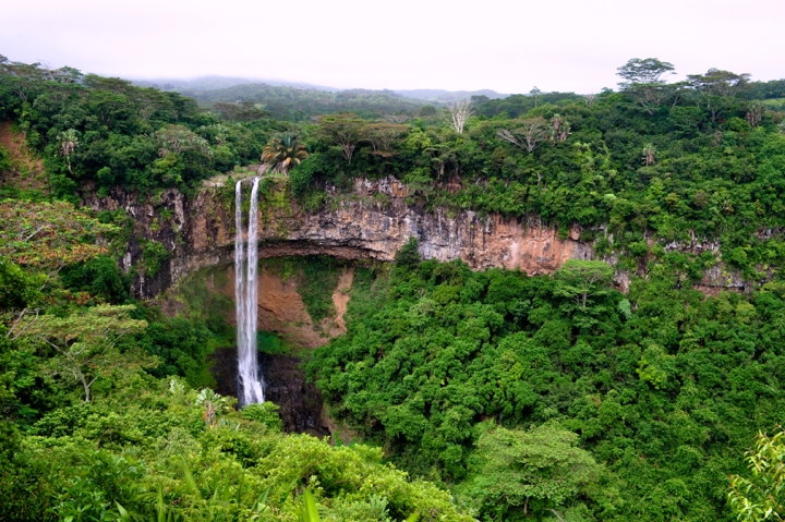 A thin waterfall amidst a lush, green gorge