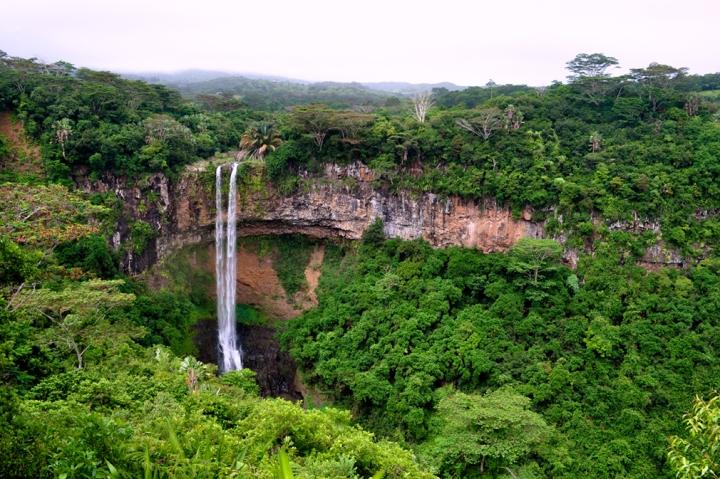 A thin waterfall amidst a lush, green gorge
