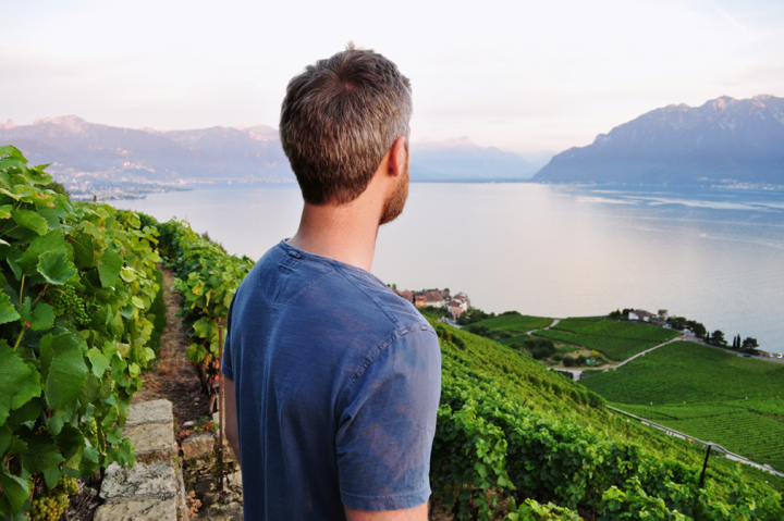 A man in blue shirt looking over a vineyard and lake