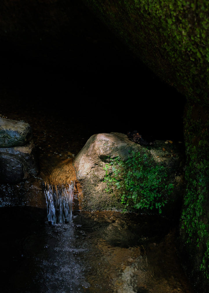 A spring of water flows down a small cascade