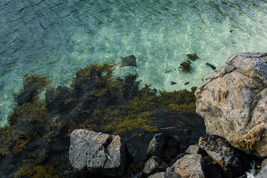 Clear ocean water by a rocky coast