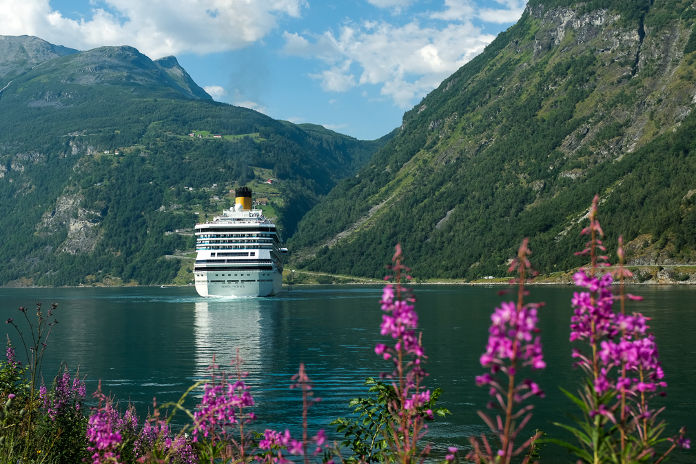 View of a cruise ship in a fjord landscape
