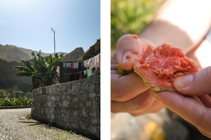 CABO VERDE Laundry and Guava