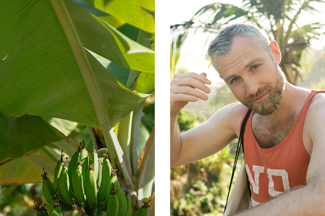Collage of banana plant and man in orange tank top