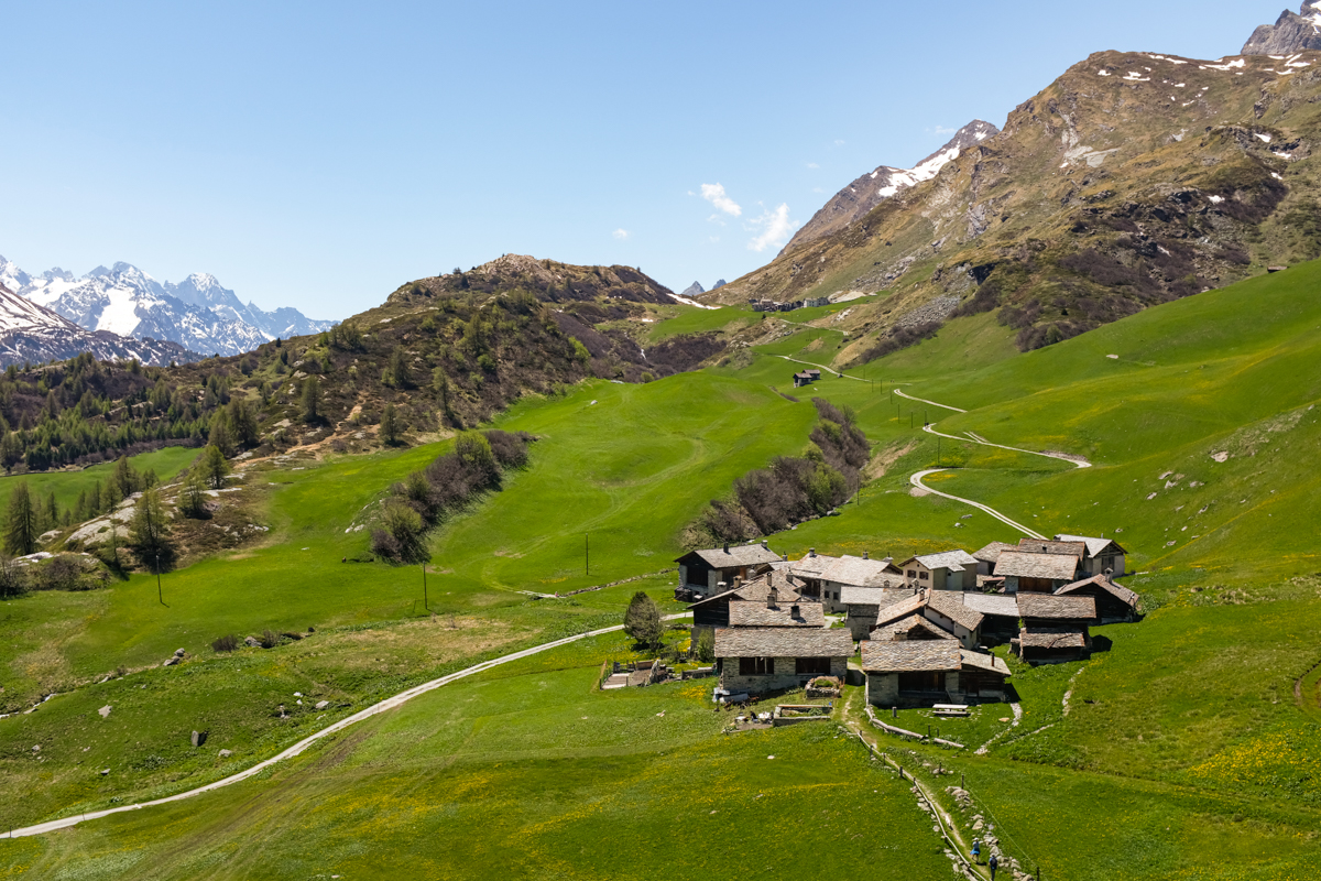 A small village in an alpine pasture