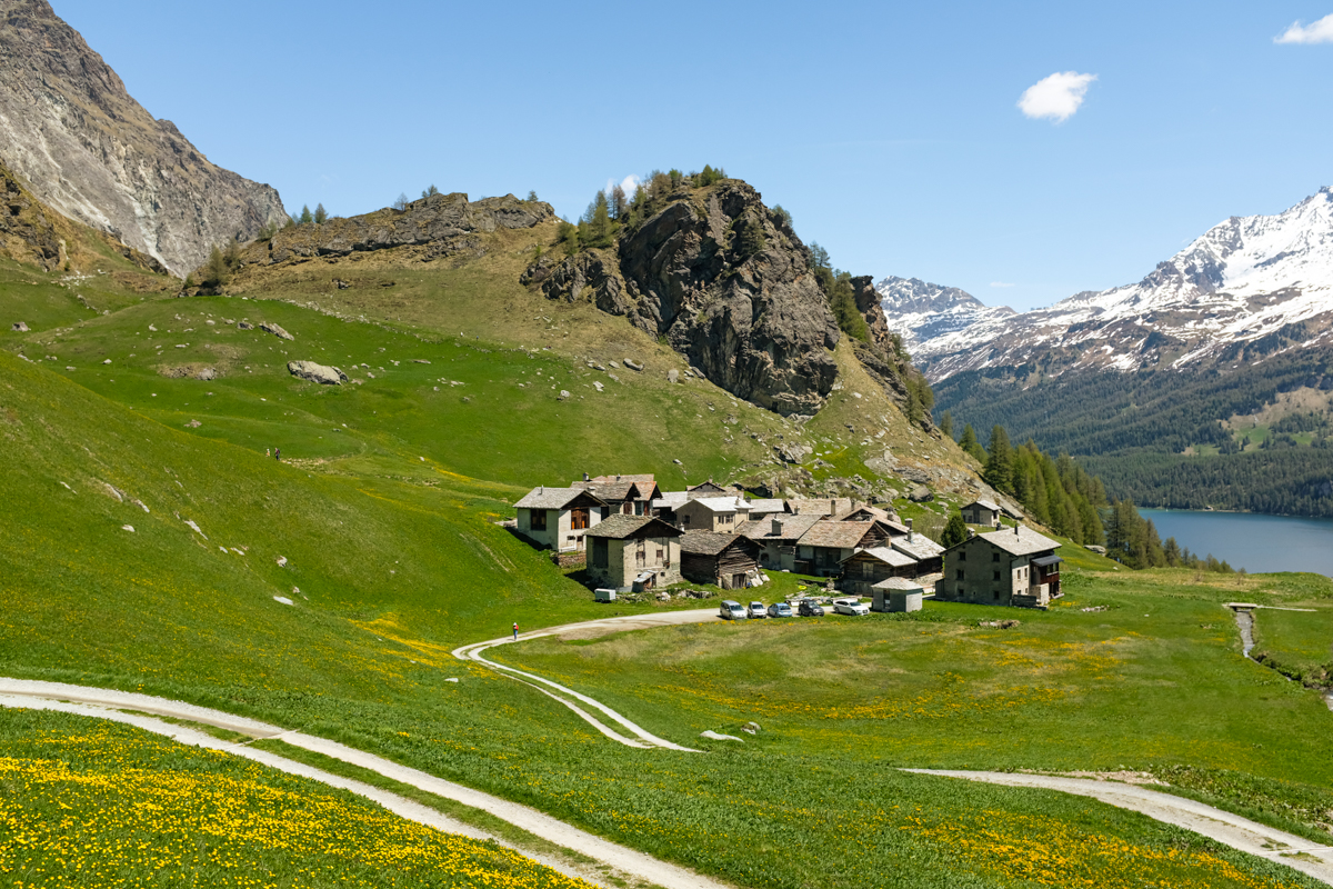 A small settlement in an alpine pasture