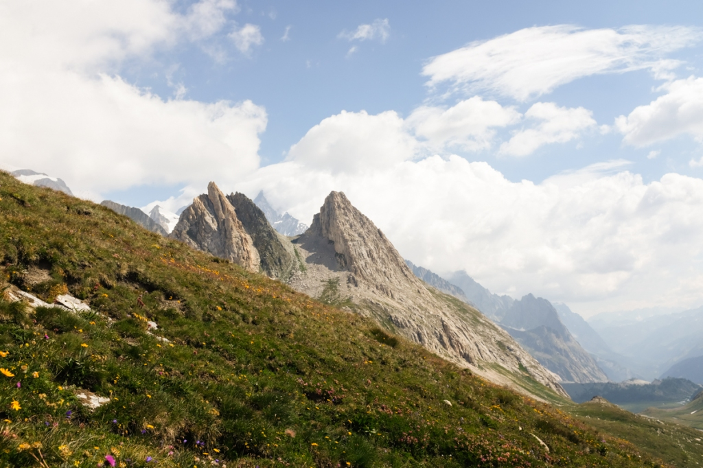 Jagged mountain peaks behind a sloping mountain meadow