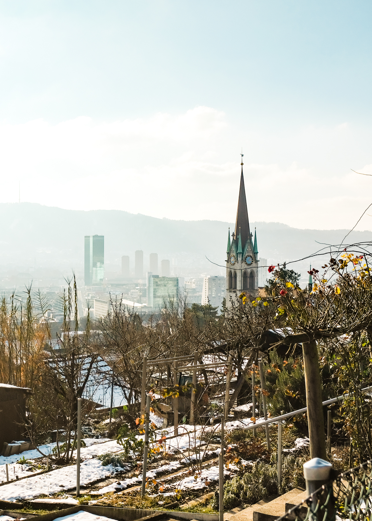 A viewpoint overlooking Zurich's Limmat Valley